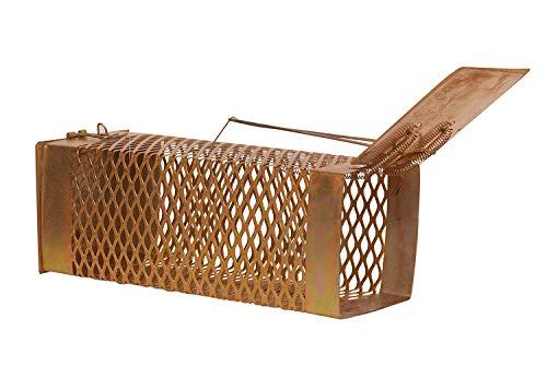 KRIWIN® Big Size( D) (26X11X10) Metallic Mouse Trap for Capturing live Rat/ Mouse/ Rodents Diamond Cut Design