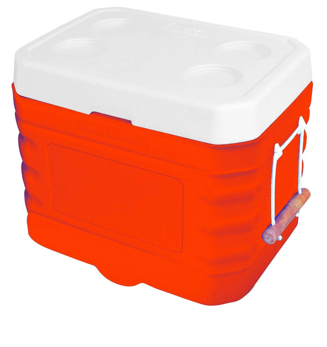 Princeware Plastic Ice Box, 90 Litre, Assorted