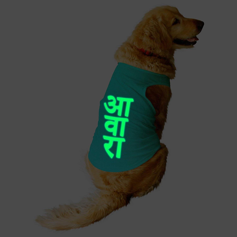 Awara Printed Glow in The Dark pet gift