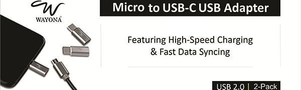 Wayona Micro to Type C Adapter