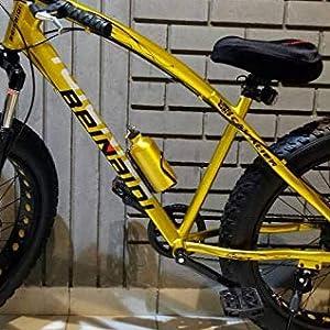 bicycle, fat bike, dual disc bike